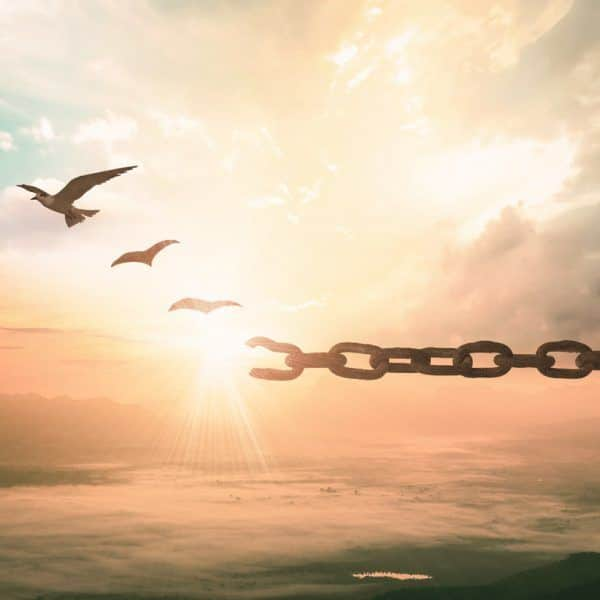 The Simple Steps to Break Free From Any Addiction